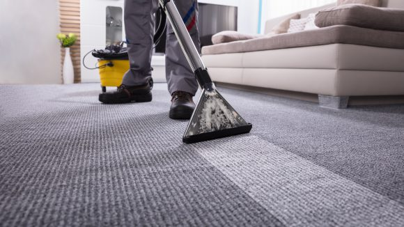 Carpet Care + Cleaning